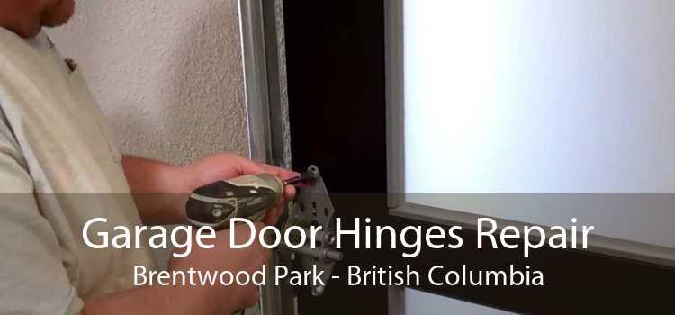 Garage Door Hinges Repair Brentwood Park - British Columbia