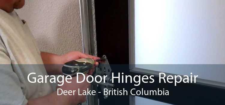 Garage Door Hinges Repair Deer Lake - British Columbia