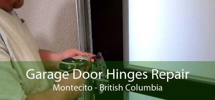 Garage Door Hinges Repair Montecito - British Columbia