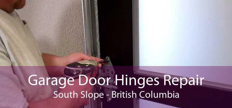 Garage Door Hinges Repair South Slope - British Columbia