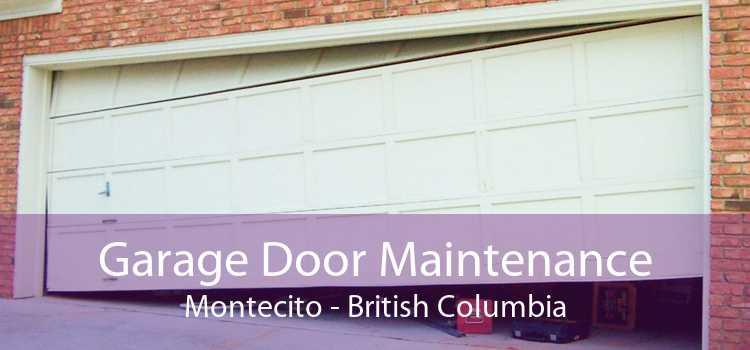Garage Door Maintenance Montecito - British Columbia