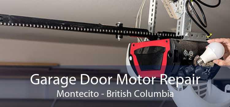 Garage Door Motor Repair Montecito - British Columbia