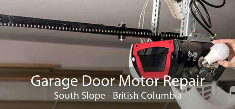 Garage Door Motor Repair South Slope - British Columbia