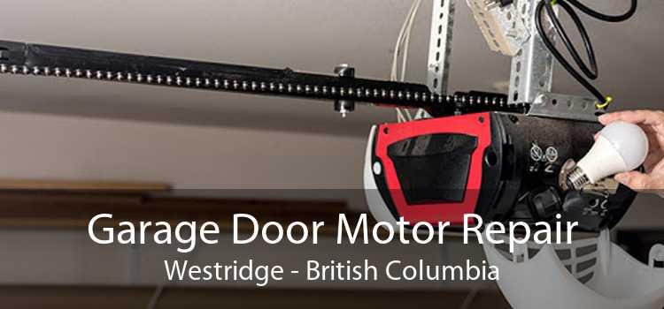 Garage Door Motor Repair Westridge - British Columbia