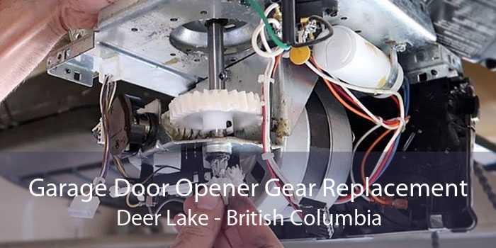 Garage Door Opener Gear Replacement Deer Lake - British Columbia