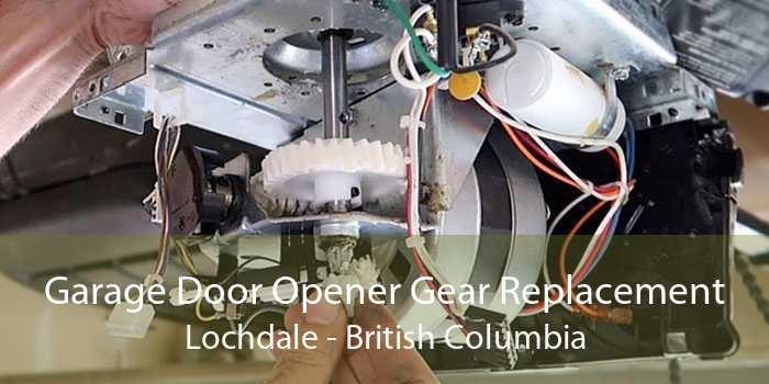 Garage Door Opener Gear Replacement Lochdale - British Columbia