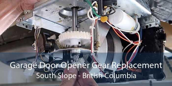 Garage Door Opener Gear Replacement South Slope - British Columbia