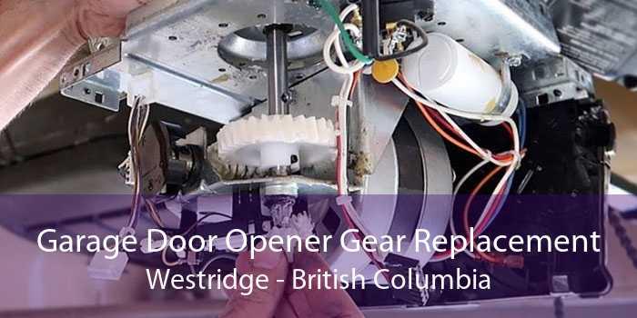 Garage Door Opener Gear Replacement Westridge - British Columbia