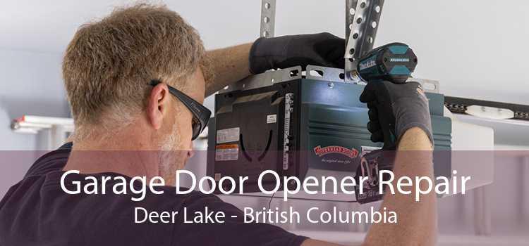 Garage Door Opener Repair Deer Lake - British Columbia