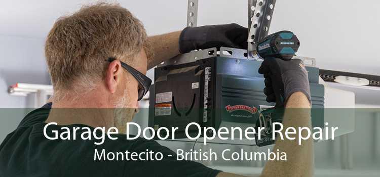 Garage Door Opener Repair Montecito - British Columbia