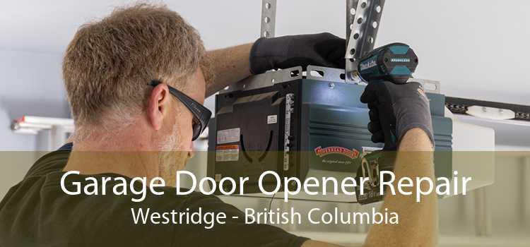 Garage Door Opener Repair Westridge - British Columbia