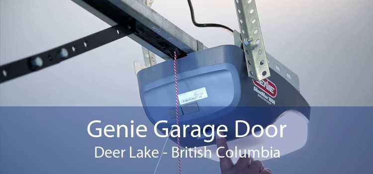 Genie Garage Door Deer Lake - British Columbia