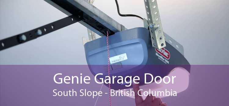 Genie Garage Door South Slope - British Columbia