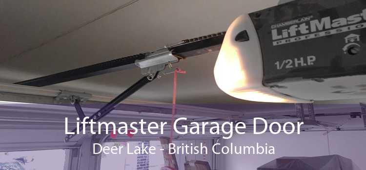 Liftmaster Garage Door Deer Lake - British Columbia