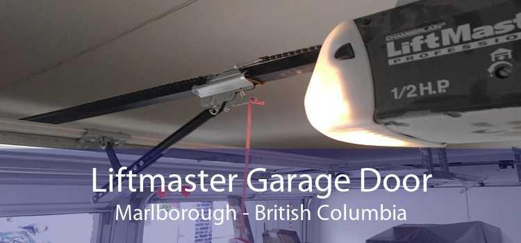 Liftmaster Garage Door Marlborough - British Columbia